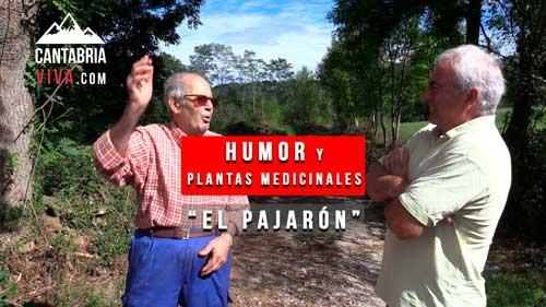 humor en cantabria